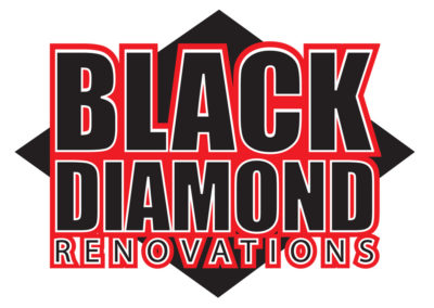 Black diamond logo final color